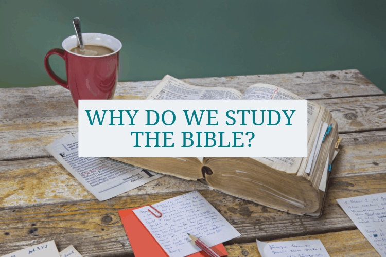 photo-show-green-background-red-mug-of-coffee-open-Bible-and-study-noteand-the-wordswhy-do-we-study-the-bible-superimposed-over-them