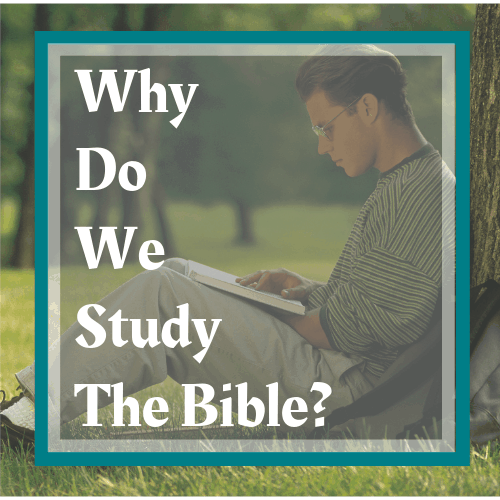 young-man-sitting-at-the-base-of-a-tree-studying-his-Bible-read-more-at-www-honey-bible-study-com